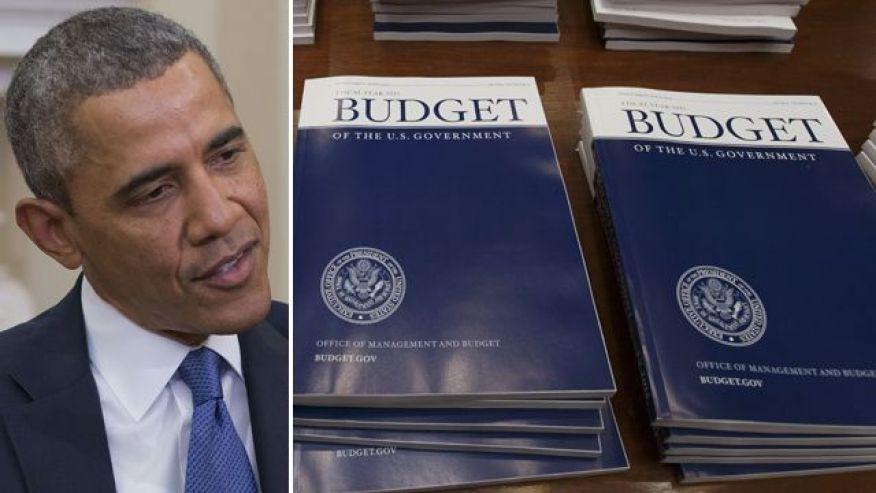president obama budget proposal for 2015 essay